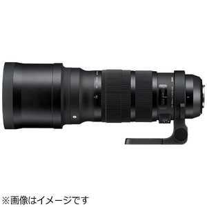 シグマ 望遠レンズ キャノン用 キャノン 120300F2.8DGOSHSM