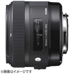 シグマ 標準レンズ キヤノン用 キャノン 301.4DCHSM