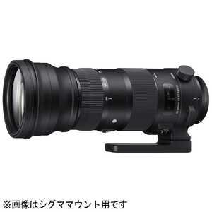 シグマ SIGMA 150-600mm F5-6.3 DG OS HSM(ニコン) ニコン用 150600F56.3DGOSHSM