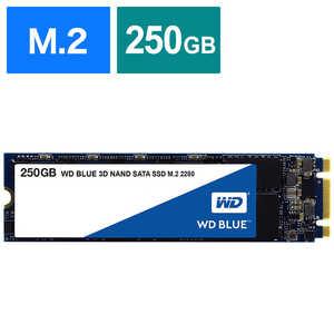 WD Blue 3D NAND SATA WDS250G2B0B