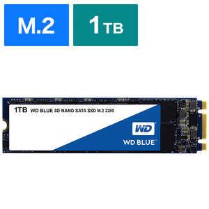 WD Blue 3D NAND SATA WDS100T2B0B