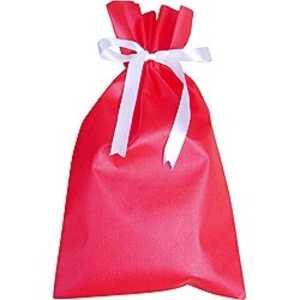 ドットコム ラッピング袋 赤 E1 ドットコム専用 カデンラッピングE1
