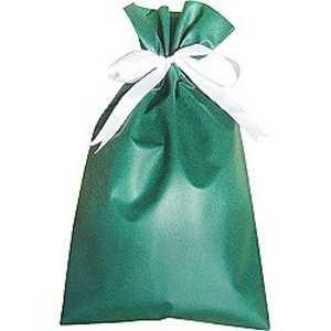 ドットコム ラッピング袋 緑 E2 ドットコム専用 カデンラッピングE2