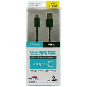 多摩電子工業(株) 2m[USB-C ⇔ USB-A]2.0ケーブル 充電・転送 ブラック TH101CA20K