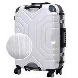 エスケープ TSAロック搭載スーツケース(83L) ヘアラインホワイト/ B5225T67ヘアラインホワイトブル