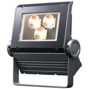 岩崎電気 LEDioc FLOOD NEO (レディオック フラッド ネオ) 60クラス 狭角タイプ 電球色タイプ ECF0698LSAN8DG