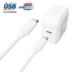 ラディウス USB-PD対応 USB-C 分離ACアダプター Type-C Cable 1.0m付属 ホワイト RKUPA18W