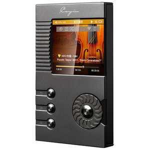 Cayin N5 DAP N5-DAP デジタルオーディオプレーヤー