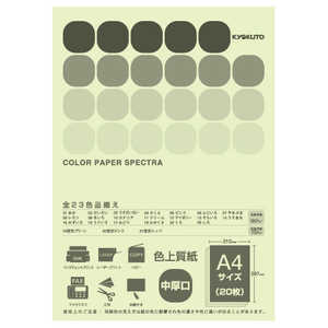 キョクトウアソシエイツ 〔各種プリンタ〕 カラーペーパースペクトラ 80g/m2(A4・20枚) うぐいす CPC16