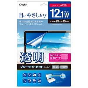ナカバヤシ Digio2 12.1型ワイド対応 ノートPC用 透明ブルーライトカット 液晶保護フィルム (262x164mm) ブルーライトカット SFFLKBC121W