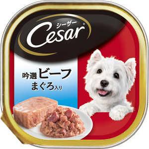 マースジャパンリミテッド シーザー シーザー 吟撰ビーフ まぐろ入り 100g 犬 CE26Nビーフマグロ100G