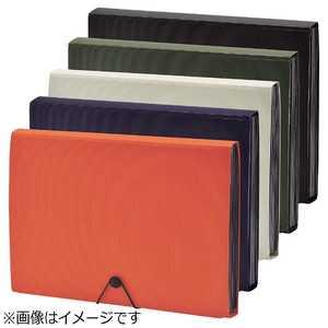 リヒトラブ [ファイル] SMART FIT ドキュメントファイル (色:オレンジ、サイズ:A4) オレンジ A76204