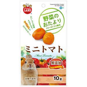 マルカン 野菜のおたより ミニトマト 10g ML-82