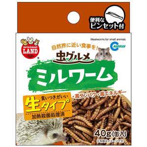 マルカン 虫グルメ ミルワーム (40g) [ペットフード] 小動物 ムシグルメミルワーム