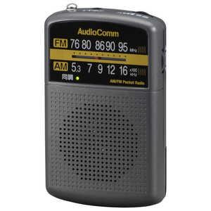 オーム電機 AM/FMポケットラジオ AudioComm グレー RADP135NH