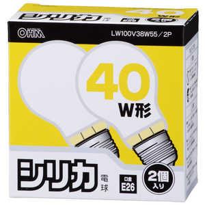 旭光電機工業 シリカ電球100V38Wホワイト色2P ホワイト LW100V38W552P