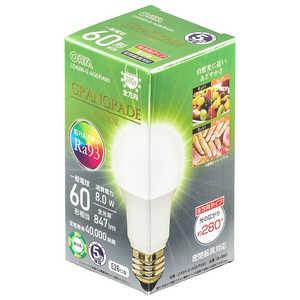 オーム電機 LED電球 E26 60形相当 昼白色 E26/N/60W LDA8NGAG6RA93