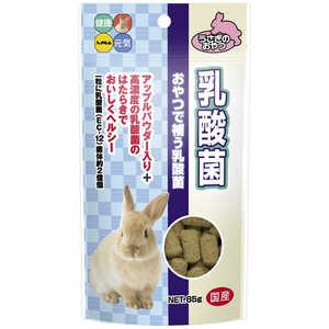 ハイペット 乳酸菌 85g 小動物 ウサギオヤツニュウサンキン