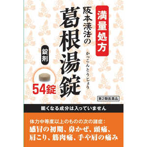 阪本漢法の葛根湯錠 54錠