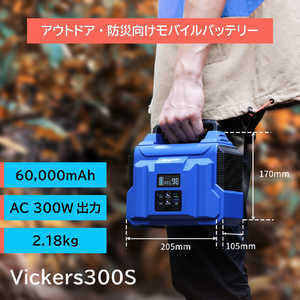 Vickers 300S